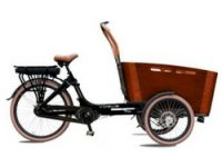 Vogue Carry bakfiets review