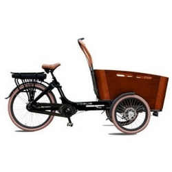 vogue carry bakfiets review beste e bike. Black Bedroom Furniture Sets. Home Design Ideas